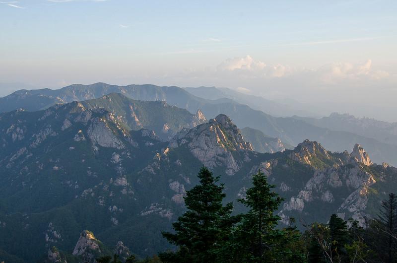 The famous Dinosaur Ridge