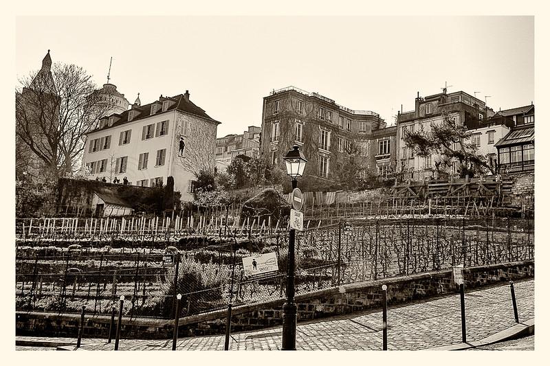 20150323_Montmartre_0143-BW.jpg