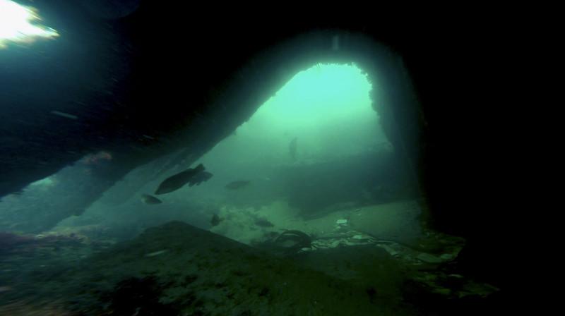 Devon-Underwater-8.jpg