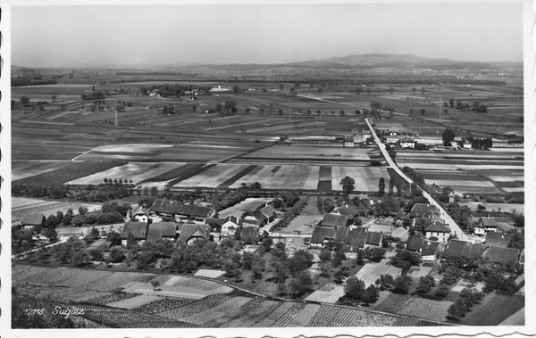 Sugiez 1950
