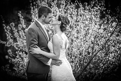 Danielle & Aaron  |  Wedding Pictures