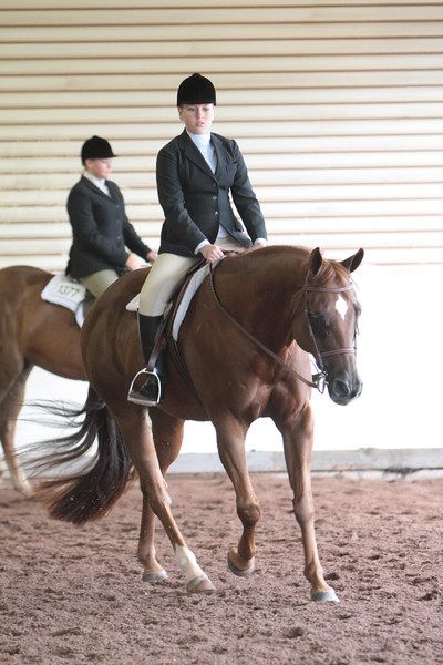 Nov Youth Hunter Under Saddle