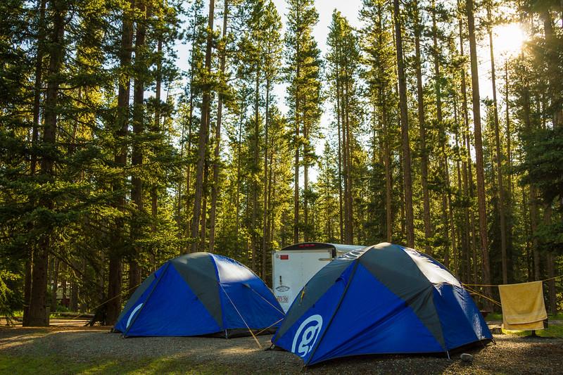 Genevieve Hathaway_Alberta_camping_g tents.jpg
