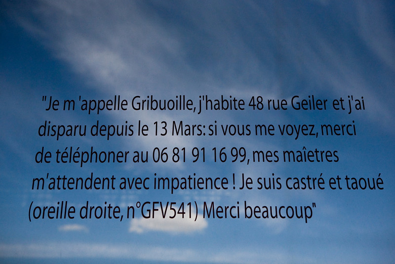 IMG_7084-10.jpg