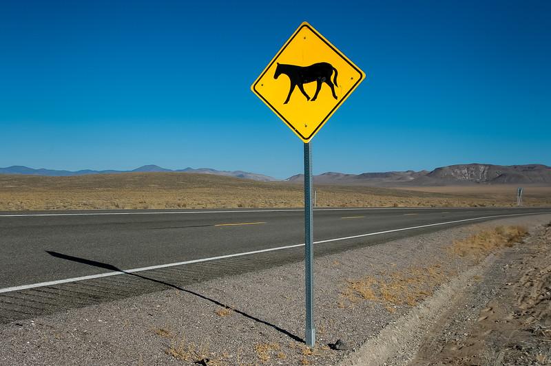 Wild Horse Warning Sign  #3