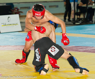 MMA and Combat Wrestling