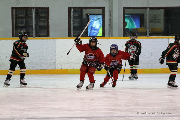Clarington Thunder Red Devils Novice Boys Woodville Tournament Jan. 7, 2012