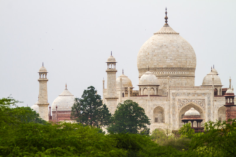 The top of the Taj Mahal is seen with green trees in the foreground