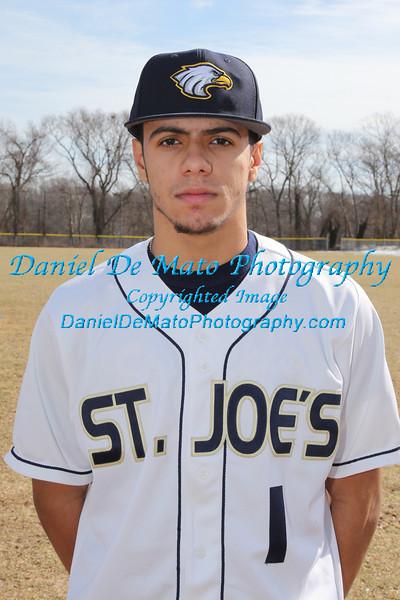 2014 St. Joseph's College Baseball Team Photos