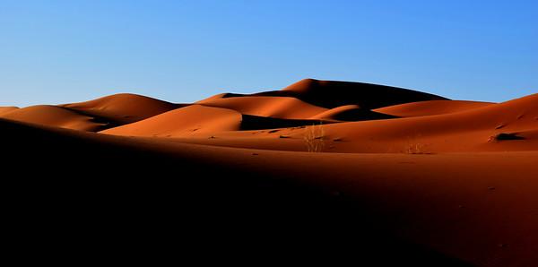 Camel treck Mazouga