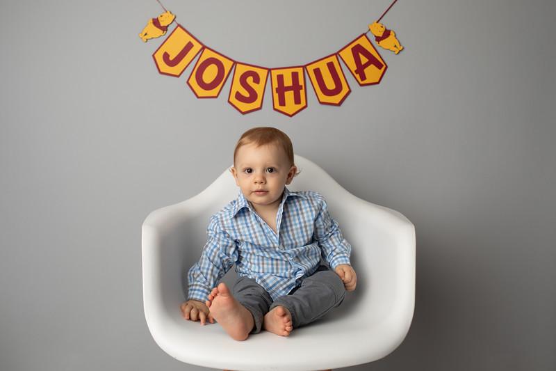 Joshua is ONE-27.jpg