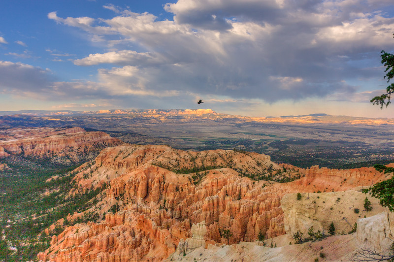 Looking for big crows at Peek-A-Boo Trailhead in Bryce Canyon
