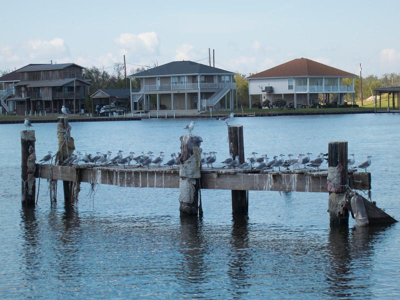 2012-10 New OrleansIMG_2056 - 2012-10-26 at 13-00-40-42.jpg