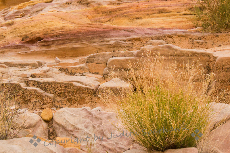 Rainbow Rocks ~ This sandstone formation shows the beautiful colors, from pink to gold to red, in Valley of Fire in Nevada.