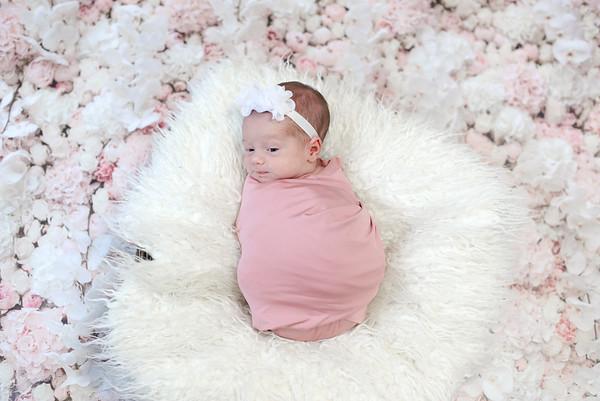 Baby Harper M