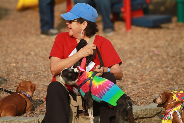 The 20th annual Buda Lions Country Fair and Wiener Dog Races