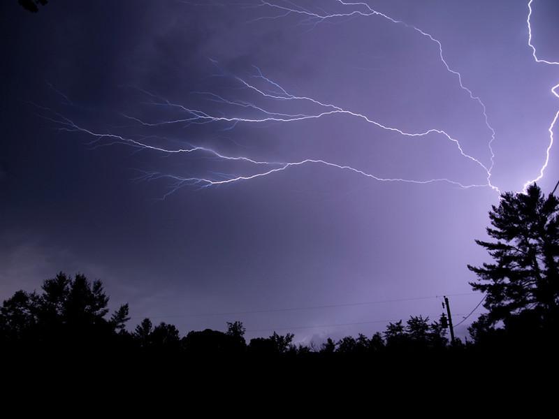 Spider Lightning04.jpg