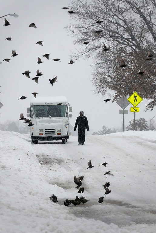 . A pedestrian walks down a street as a flock of birds fly by after heavy snowfall moved through the region on Dec. 6, 2013, in Carbondale, Ill. (AP Photo/The Southern, Steve Matzker)
