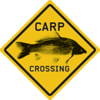 A14-Logo-Carpcrossing-130x130.png