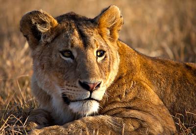 Tanzania, February 2012