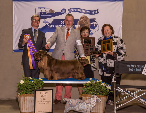 SSCA National 2018 Show Photos