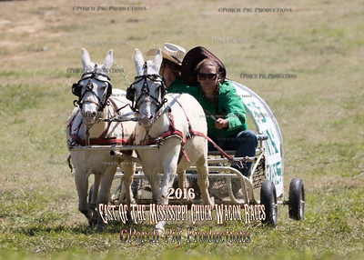 "Sunday 46"" Mules Saturday  East of The Mississippi Chuckwagon Races,"