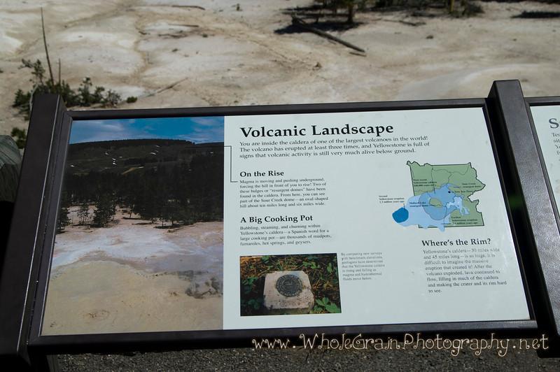 20100713_Yellowstone_2747.jpg