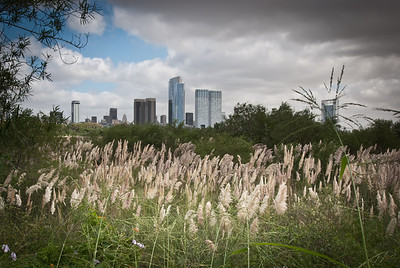 Buenos Aires Parks and Ecological Reserve