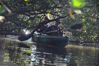 9AM Mangrove Tunnel Kayak Tour - DeCoste