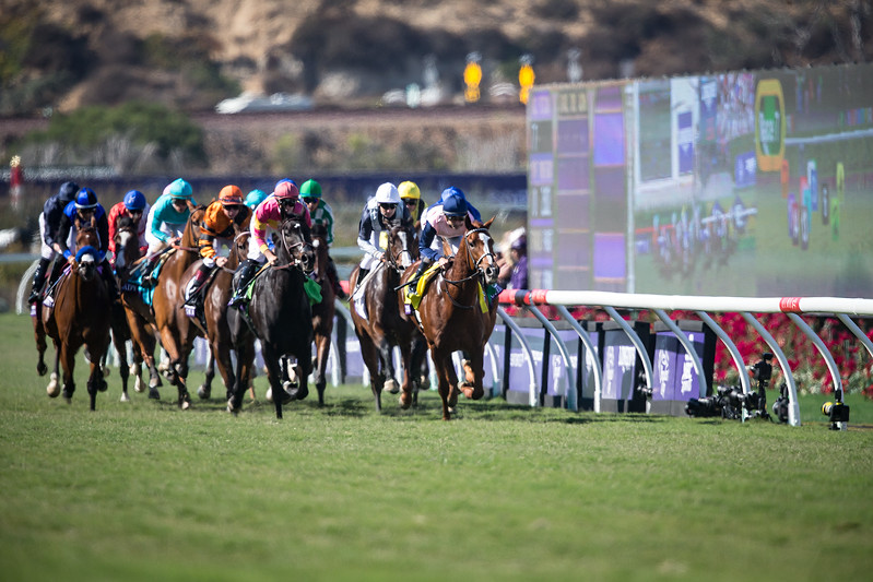Wuheida (Dubawi) wins the BC Filly & Mare Turf at Del Mar on 11.4.2017. William Buick up, Charlie Appleby trainer, Godolphin Stable owner. Zipessa leads the field the first time by.