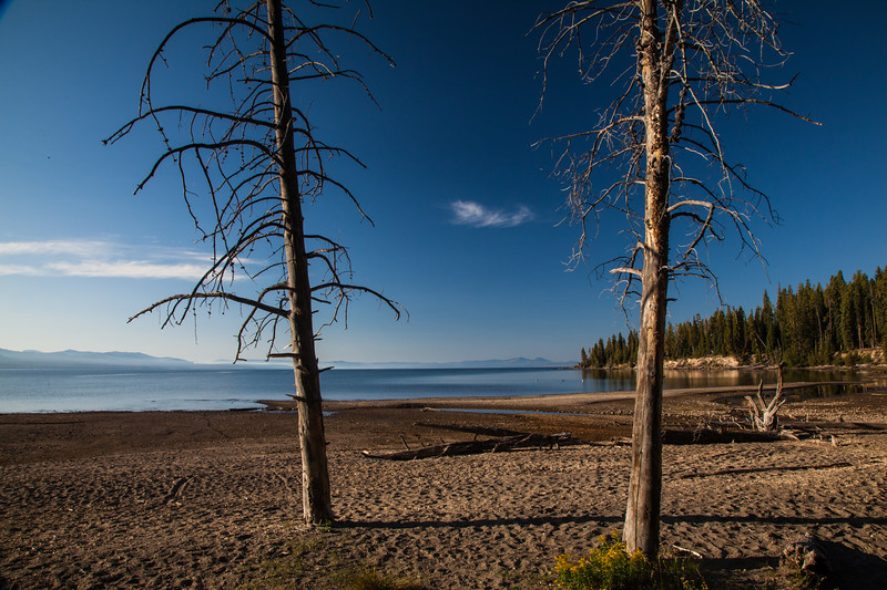 Yellowstone Lake from the Storm Point Trail