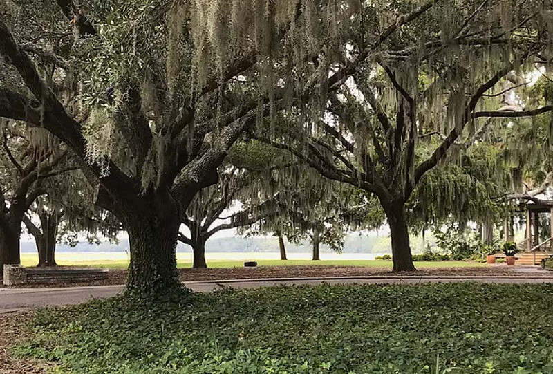 Coastal Carolina - Melissa Hege_Page_13.jpg