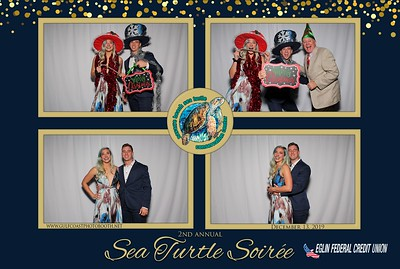 Sea Turtle Soiree