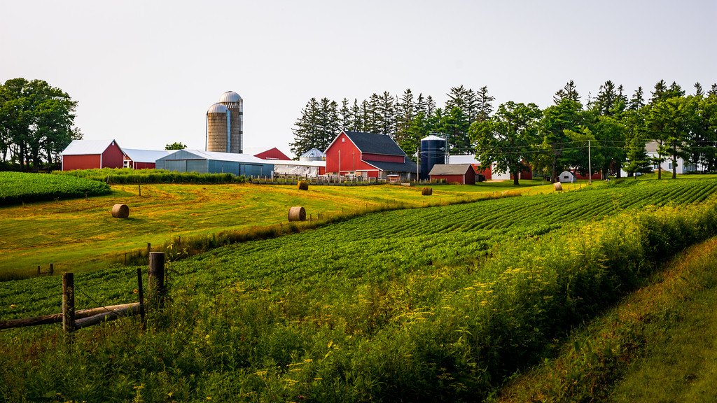 Overlooking a fence and field with rolled bales, with a silo, several barns, and a farmhouse on the other side