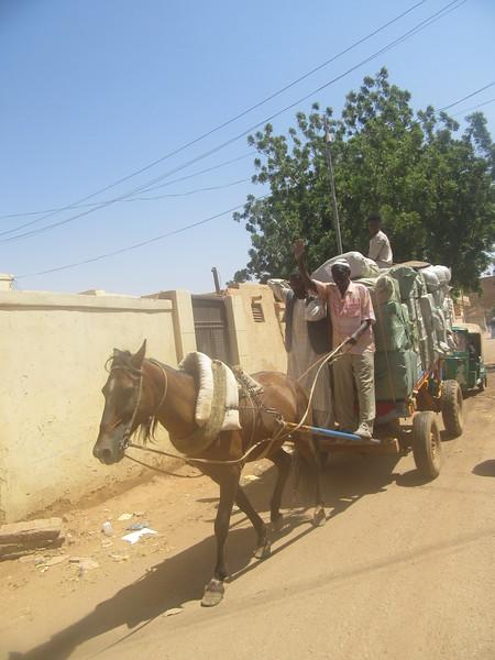 018_Khartoum. Omdurman. Old Souq Market. Donkey delivery.JPG