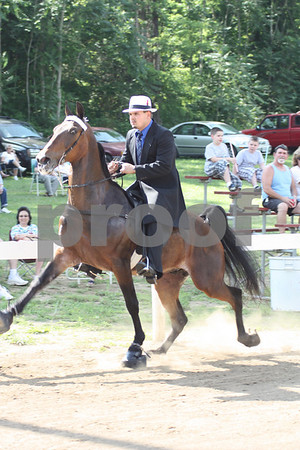 Ivanhoe Horse Show 2010-Walking Classes