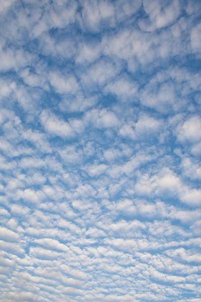 Popcorn cloud sky