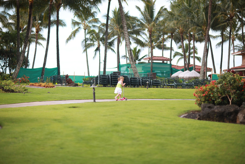 Kauai_D4_AM 014.jpg
