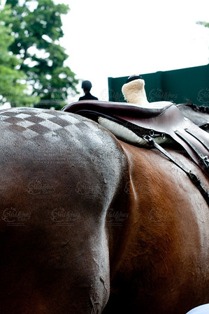 Upperville Horse Show, 2011