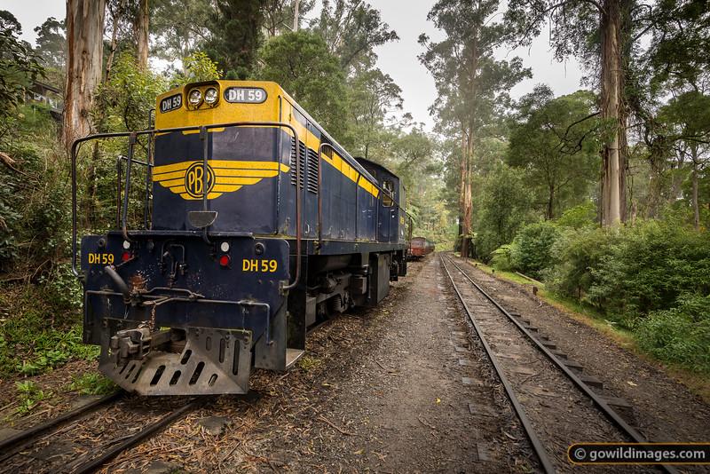 Dandenongs Rail