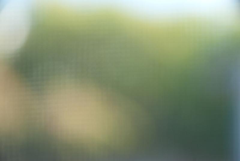 untitled-6.jpg