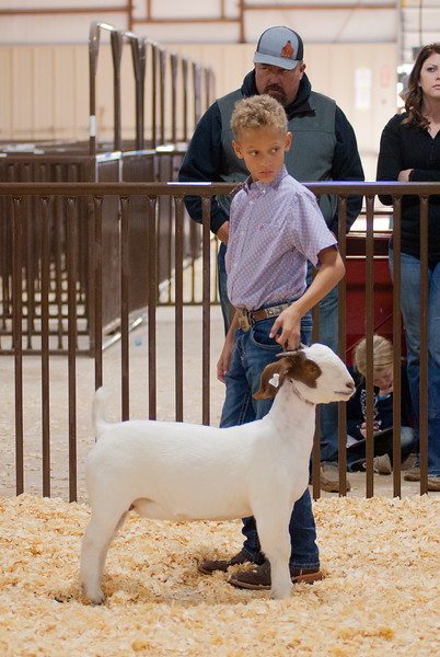 kay_county_showdown_goats_20191207-191.jpg