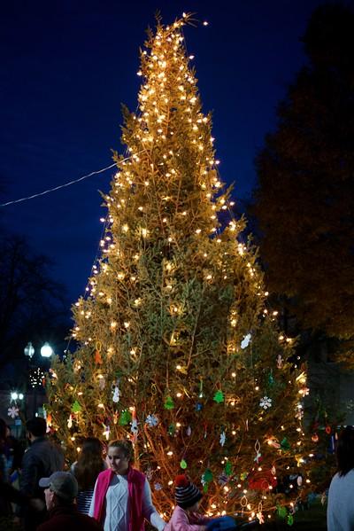 2017 Roslindale Tree Lighting
