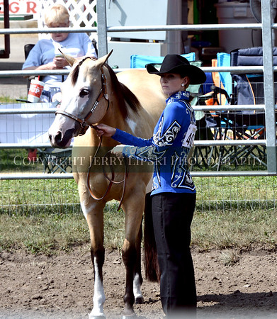 2018 Western Horse Show