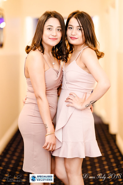 Specialised Solutions Xmas Party 2018 - Web (120 of 315)_final.jpg