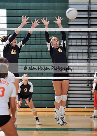 Williamston Varsity Volleyball Tournament