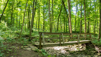 Bruce Trail Hike #9: Louth Conservation Area