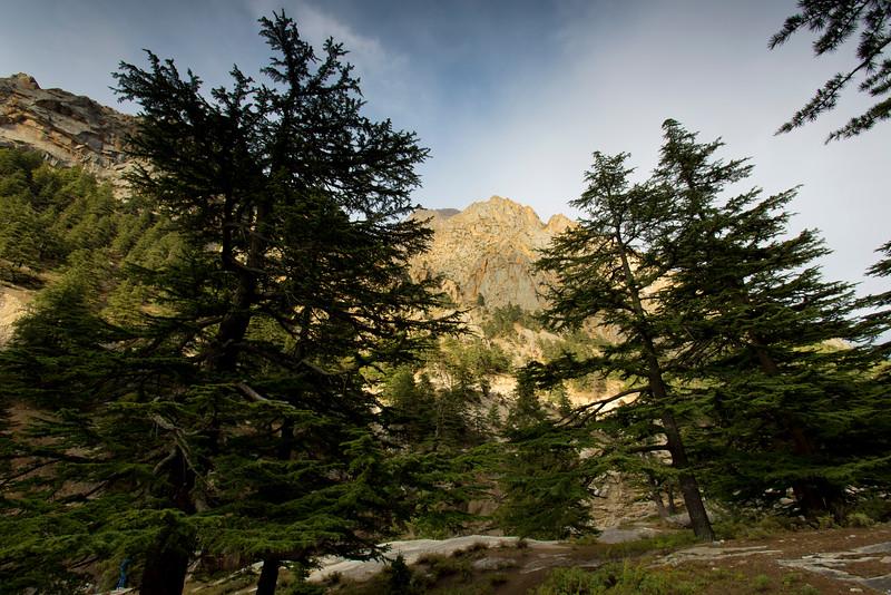 Himalayas 175.jpg