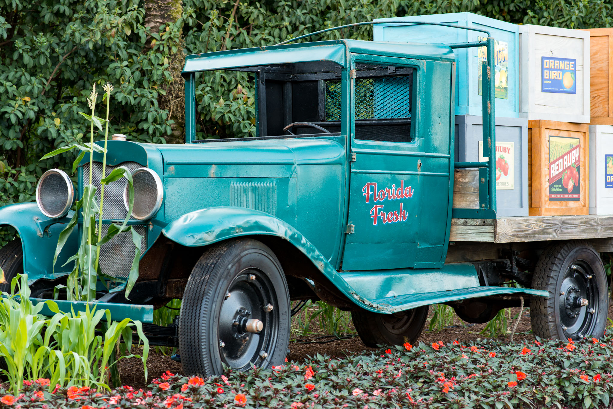 Florida Fresh Truck - Epcot Flower & Garden Festival 2016