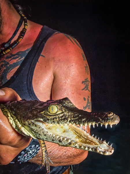 American Crocodile Education Sanctuary--23.jpg